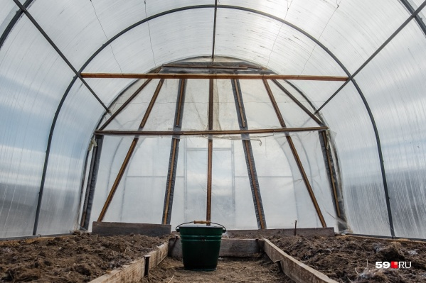 Кроме теплиц построят овощехранилище и цех по переработке продукции