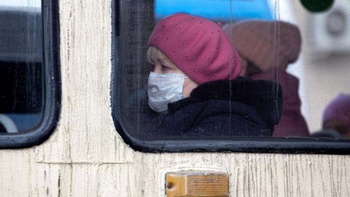 Театры закрываются, старикам начнут носить еду на дом: хроника коронавируса в Новосибирске