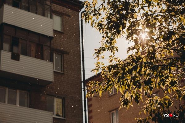 Десяткам домов нужно будет работать с новой управляющей компанией