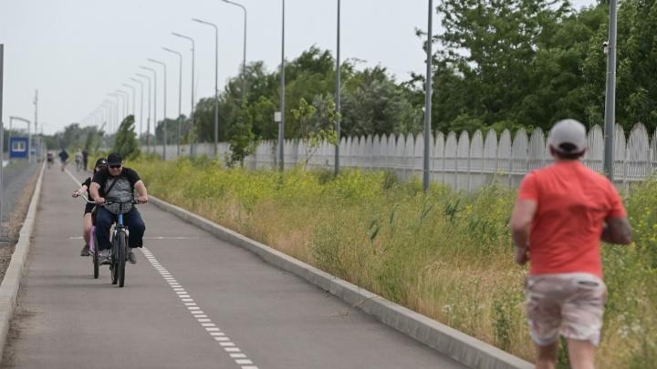 Коронавирус в Ростове: итоги дня, 18 июня