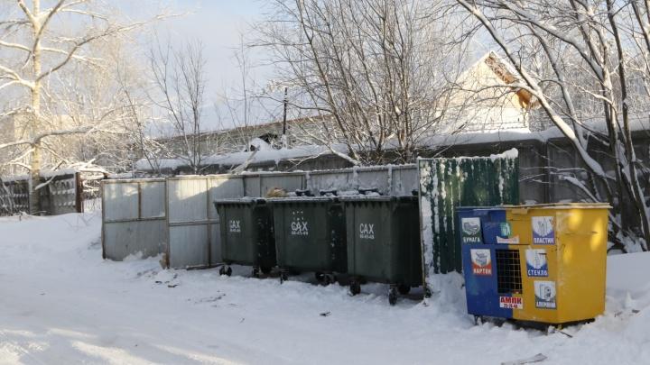 Контейнеры для раздельного сбора мусора в Архангельске и Новодвинске решили не убирать