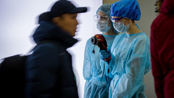 За сутки в Тюменской области выявили больше 30 новых случаев заражения коронавирусом