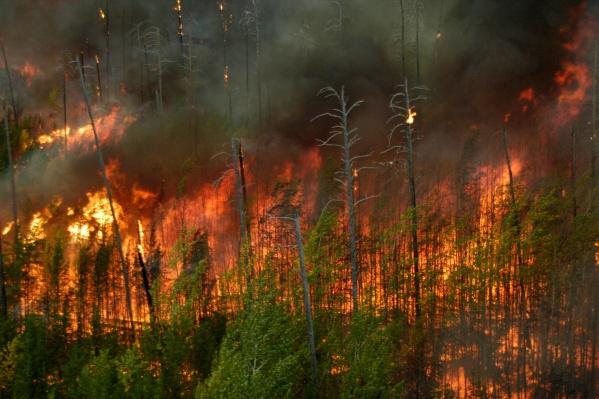 Леса горят вблизи Тургояка