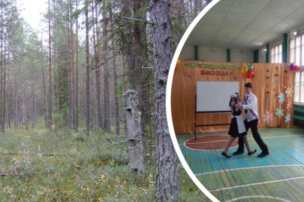 Прошедшей зимой в Выйском поселении возникла проблема с дровами для котельной, от которой зависят школа и другие здания
