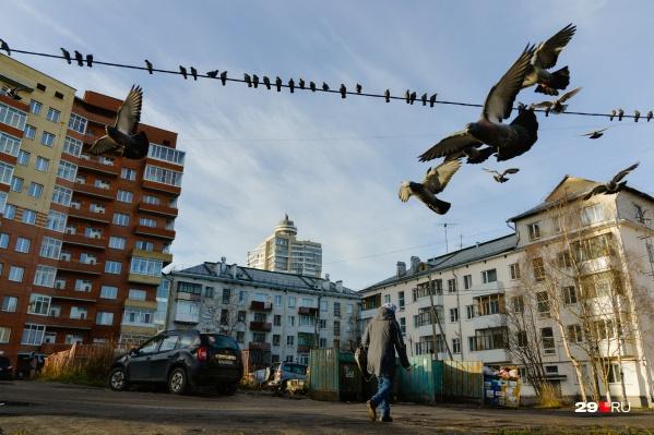 В Архангельске контейнеры для сортировки отходов появились еще до мусорной реформы