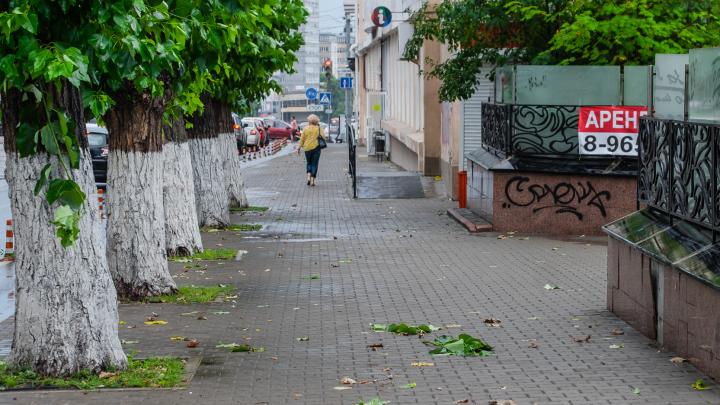 МЧС предупреждает о сильном ветре и ночном похолодании в Прикамье
