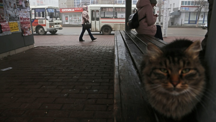 К концу недели погода в Башкирии значительно ухудшится