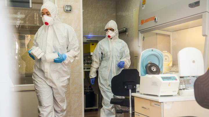 Еще у двоих человек в Свердловской области обнаружили коронавирус