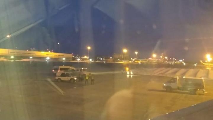 Появилось видео из салона самолета Москва — Екатеринбург, в котором искали бомбу