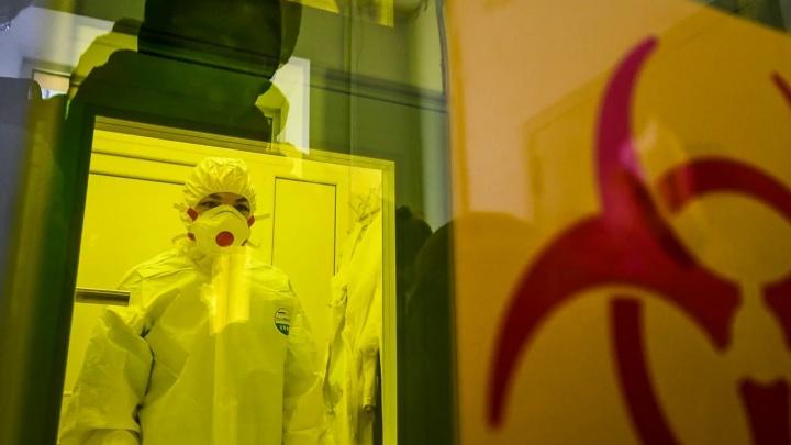 «Это похоже на радиацию»: патологоанатом рассказал, как COVID действует на лёгкие