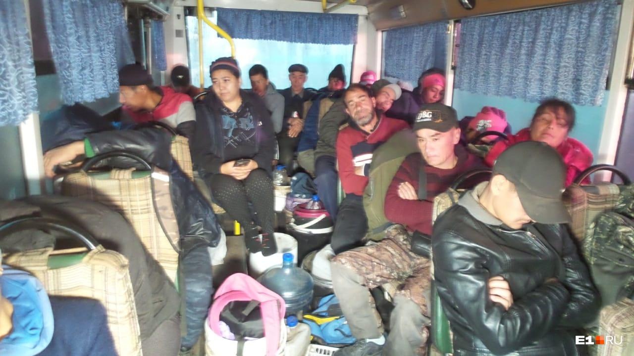 На выезде из Екатеринбурга ГИБДД устроила проверку автобусов, везущих гастарбайтеров убирать урожай