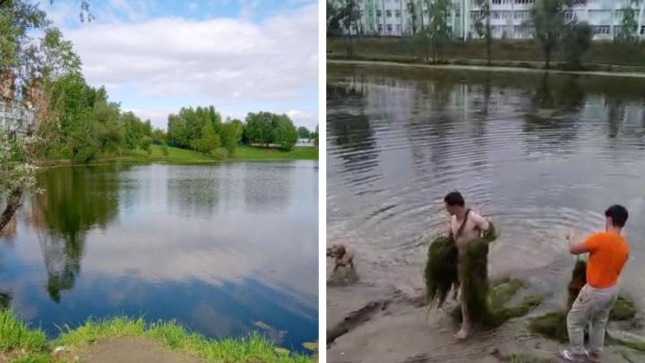 «Выбился из сил, вытаскивая огромную кучу травы»: пьяный сибиряк решил почистить озеро и чуть не утонул