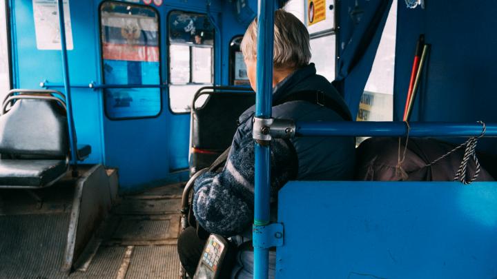 Вы не спрашивали, но мы отвечаем: как перевезти собаку в салоне пассажирского транспорта в Омске