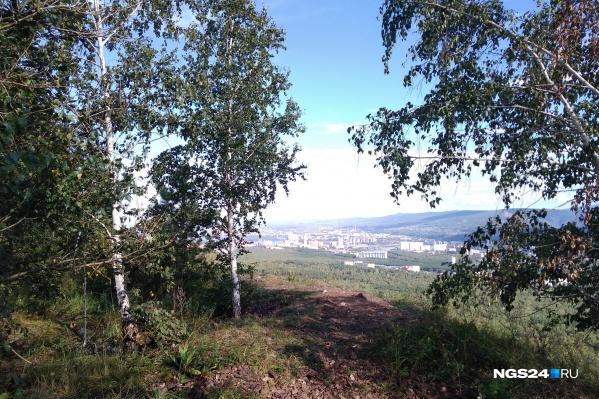 На «Сопку» сейчас ходят редкие туристы с «Гремячей гривы». После благоустройства поток желающих полюбоваться видом с горы вырастет