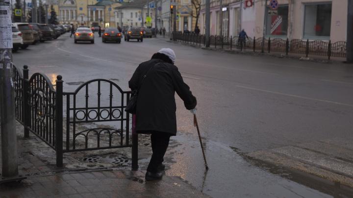 «Патриотизм никто не отменял»: власти Ярославля ответили на упрек в плохой уборке города