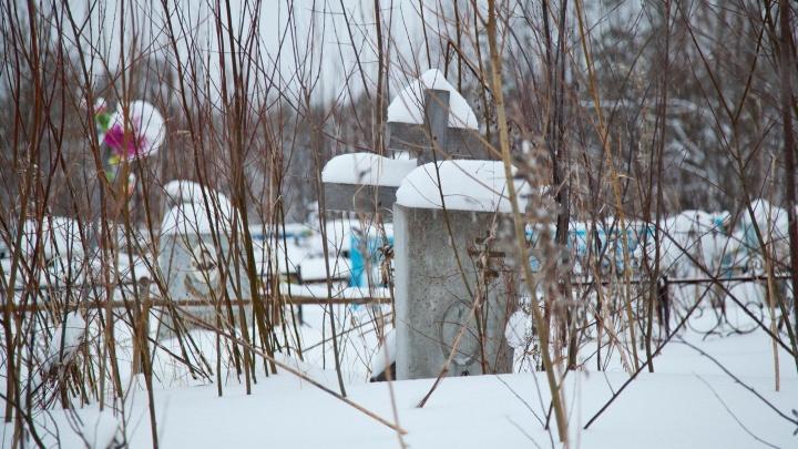 Суд признал администрацию Коношского района виновной в выделении земли кладбища для школы