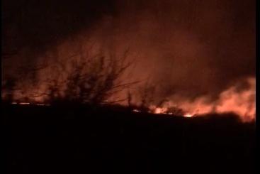 Огонь распространился на десятки метров