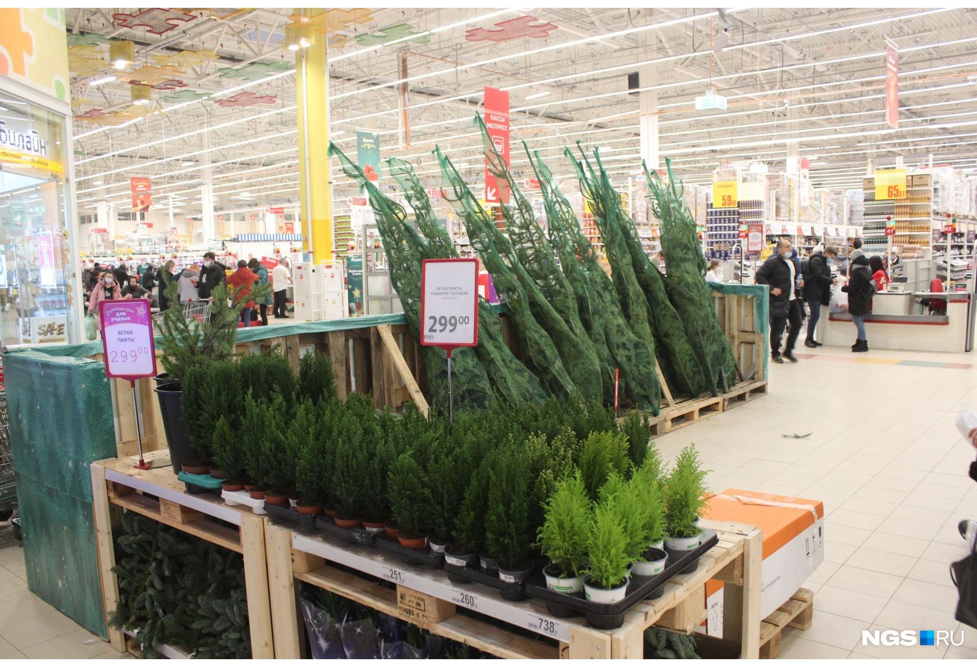 Также здесь можно купить маленькие декоративные деревья за 299 рублей