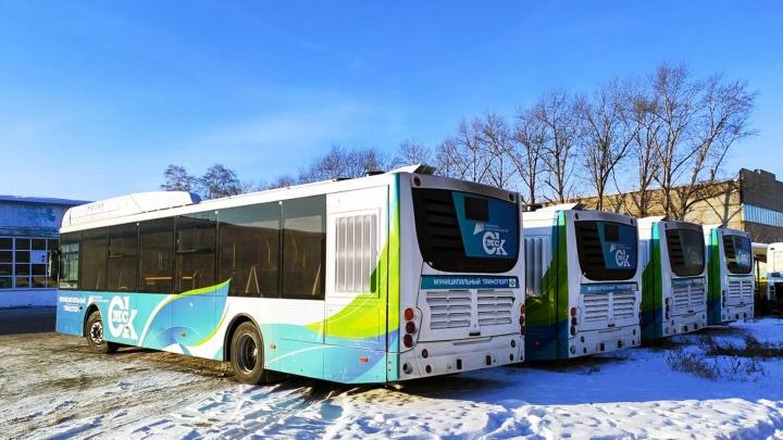 Новые «Волгабасы» пообещали выпустить на улицы Омска в январе