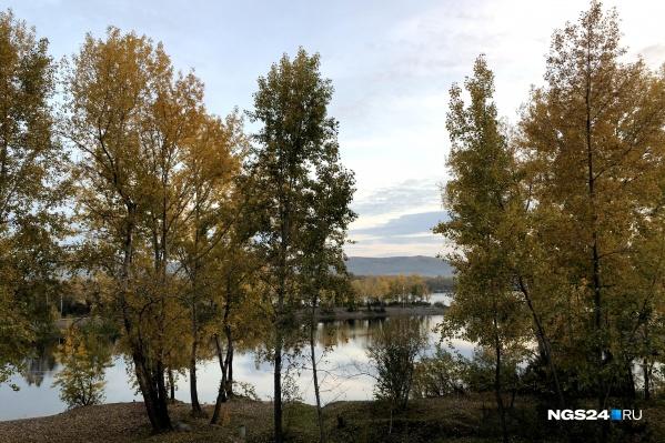 Золотая осень в Красноярске