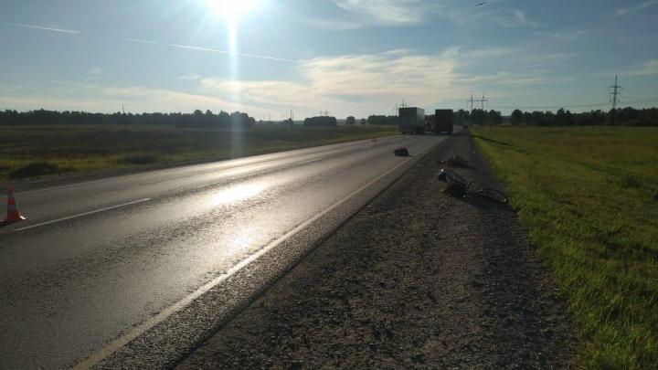 На новосибирской трассе грузовик насмерть сбил 84-летнего велосипедиста