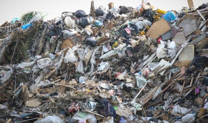 В Кургане в районе Шуховского полигона ТБО нашли вредные вещества