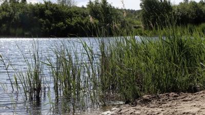 У озера в Автозаводском районе найдена убитая девушка: собираем подробности онлайн