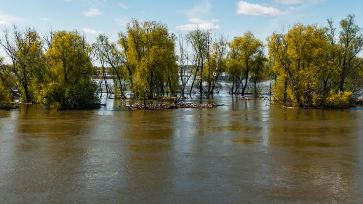 В Тюменской области в реке нашли тело мужчины