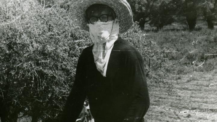 «В начале июня начиналась борьба за выживание»: волгоградец — о нашествии мошек и комаров