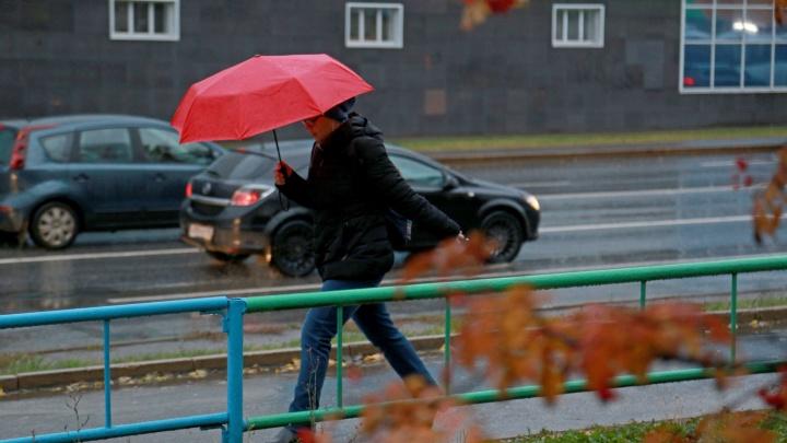 Башкирию на три дня накроют дожди