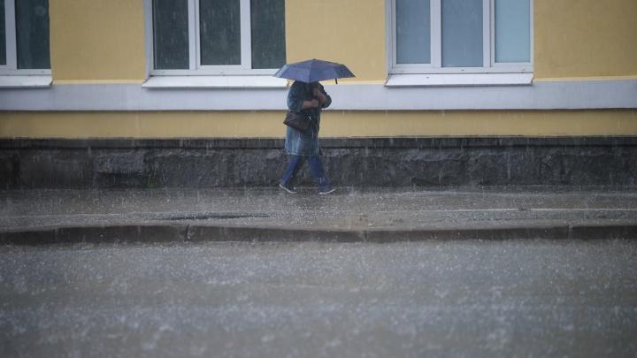 Гроза, град и мощный ветер: свердловские спасатели сделали срочное штормовое предупреждение