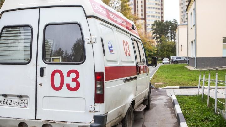 В Кузбассе собака укусила ребёнка за щёку: в МВД рассказали подробности