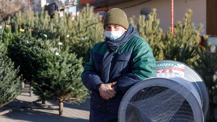 «Мы не заметили, что люди стали беднее»: как накануне коронавирусного Нового года работают елочные базары Волгограда