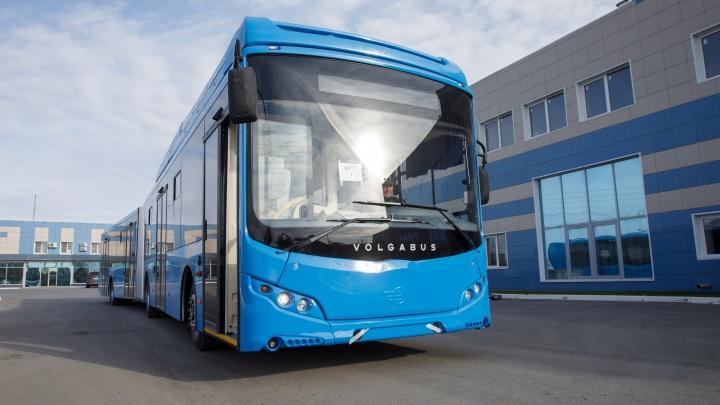 Новые автобусы и крупные заказы: Volgabus запускает серийные инновации на дороги России
