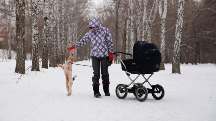 Антициклон отступает: синоптики пообещали Екатеринбургу похолодание