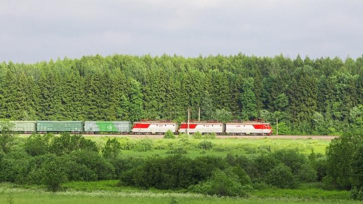 Погрузка продовольствия на Северной железной дороге выросла почти на треть в июне