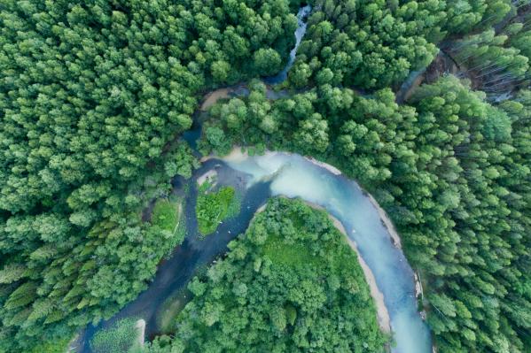В левом углу— чистая горная река Шегультан, справа — загрязненная река Ольховка