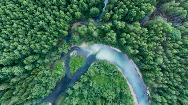«В ботинок попала вода, теперь жжет»: турист снял фильм о загрязнении таежных рек на Урале