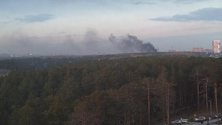 На территории Новосибирского зоопарка произошёл пожар
