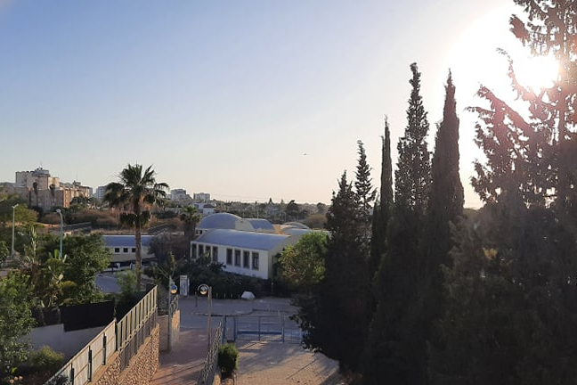 Наши в Израиле: как страна преждевременно вышла с карантина и почти вернулась в изоляцию