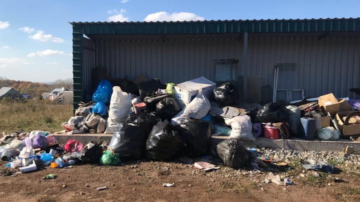 Жительница Башкирии — о горе невывезенного мусора: «Появились дикие собаки, ждём теперь крыс»