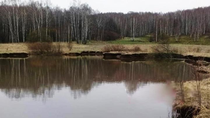 Карстовый провал в Арзамасском районе превратился в озеро