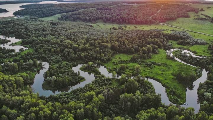 Новосибирский блогер снял на видео необычную реку Коён — с высоты выглядит удивительно