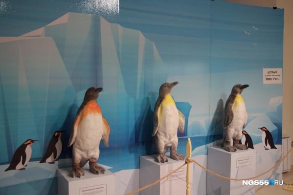 Даже шоколадным пингвинам понравилось бы в Антарктиде