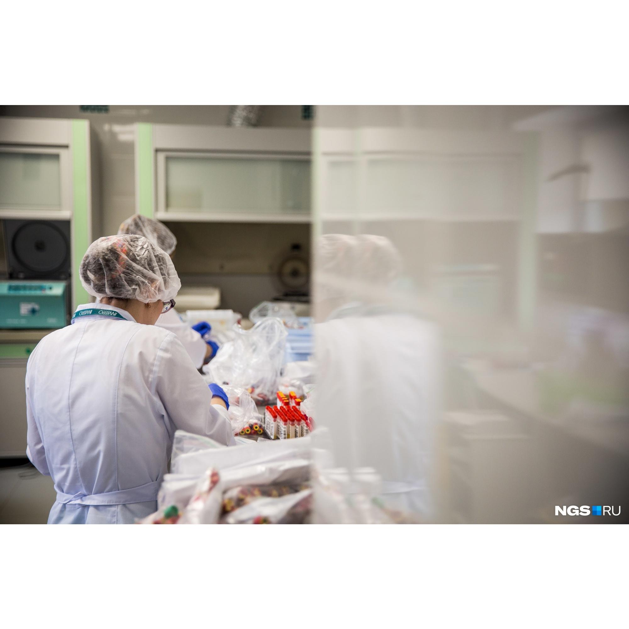 Новосибирцам, сдавшим кровь на антитела, обещают результат через три рабочих дня или даже раньше