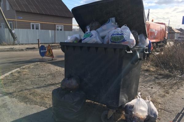 В Зауралье мусорные баки периодически пропадают, их сжигают, переворачивают и переносят в отдалённые места