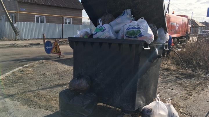 В Курганской области начали воровать мусорные баки регоператора