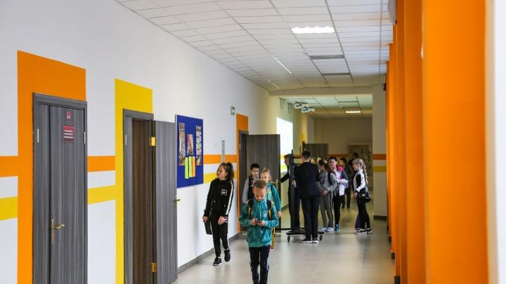 В Башкирии в трех школах выявили коронавирус, на дистант ушли уже более 300 детей