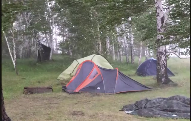 Новосибирскую область накрыло сильным ветром — видео, как ураган почти сносит деревья и беседки