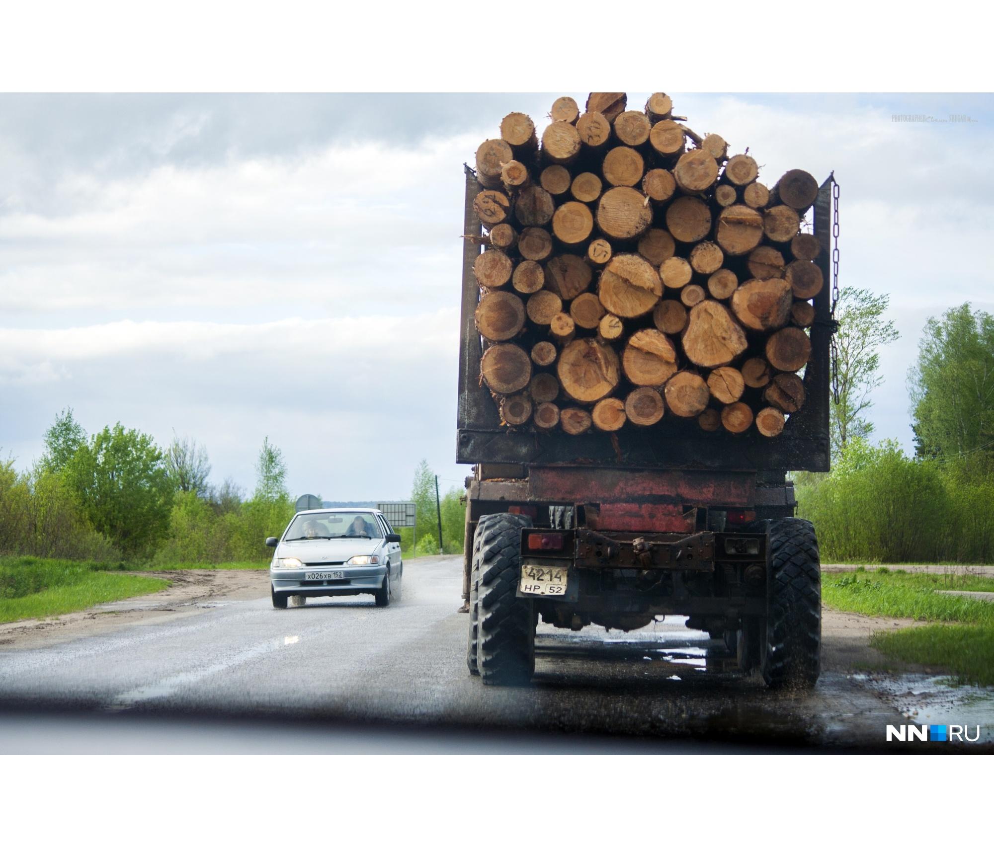 Когда едешь за лесовозом — автоматически думаешь о вечном